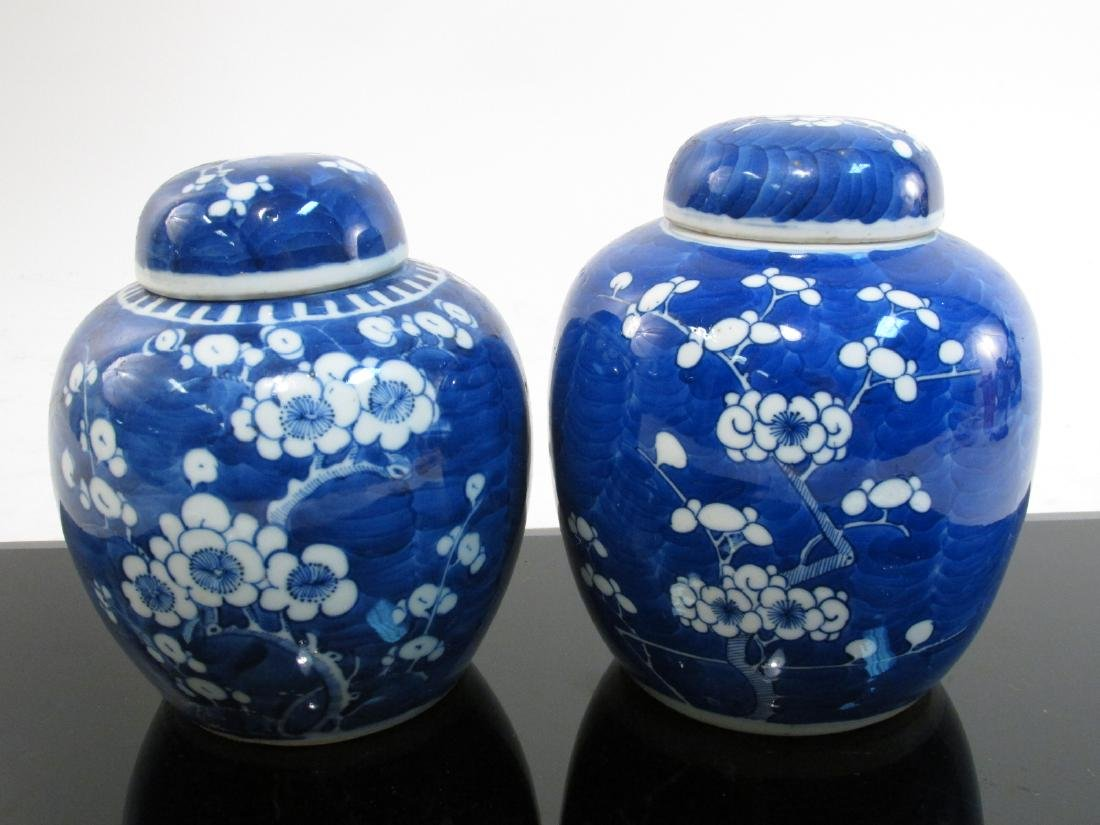 FOUR CHINESE QING DYNASTY PRUNUS GINGER JARS - 2