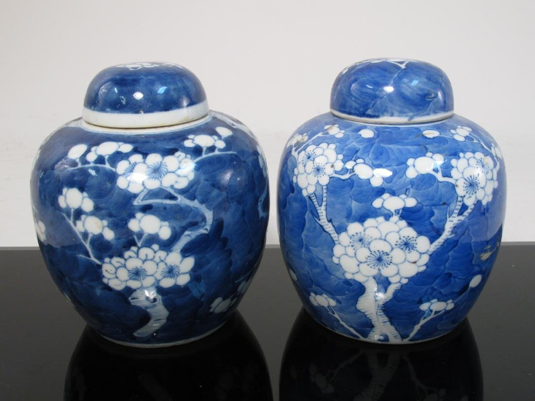 FOUR CHINESE QING DYNASTY PRUNUS GINGER JARS - 5