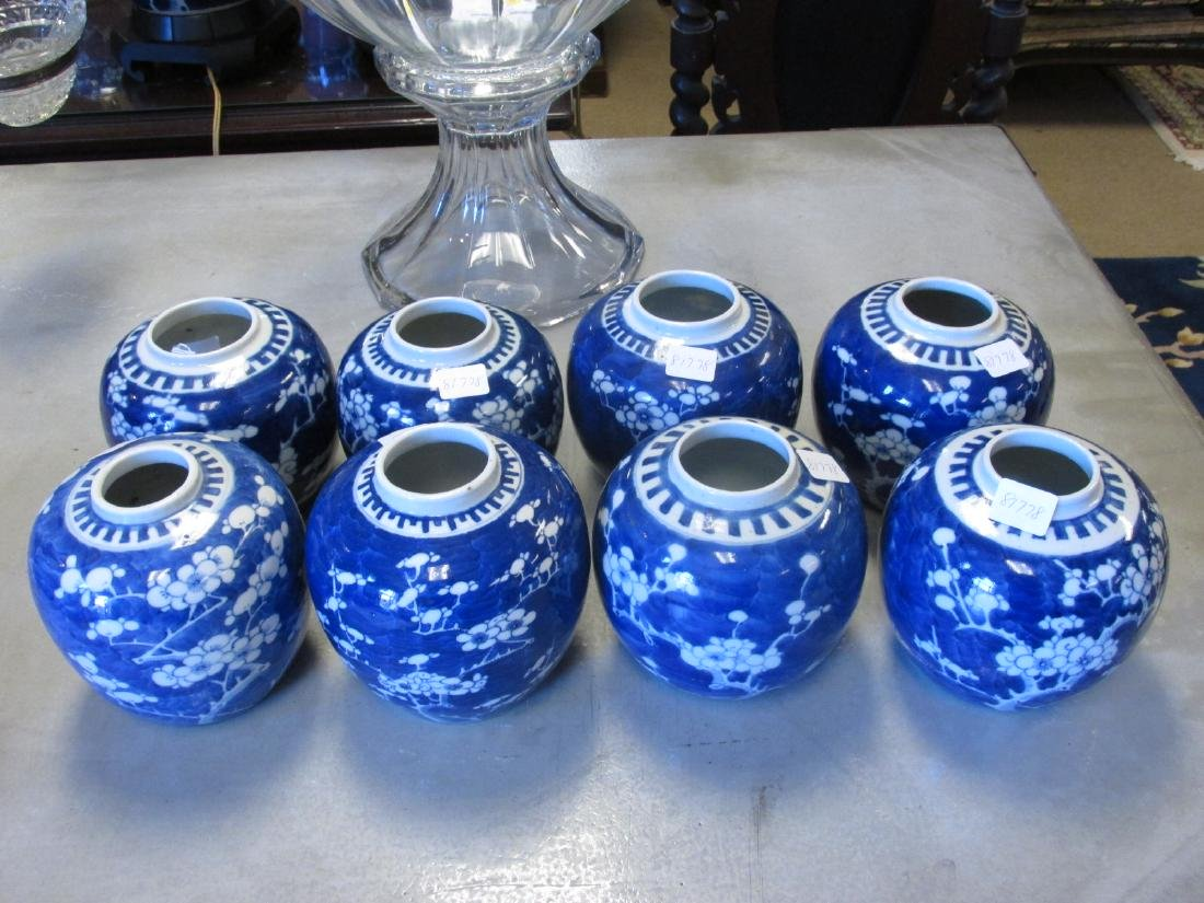 EIGHT CHINESE QING DYNASTY PRUNUS GINGER JARS