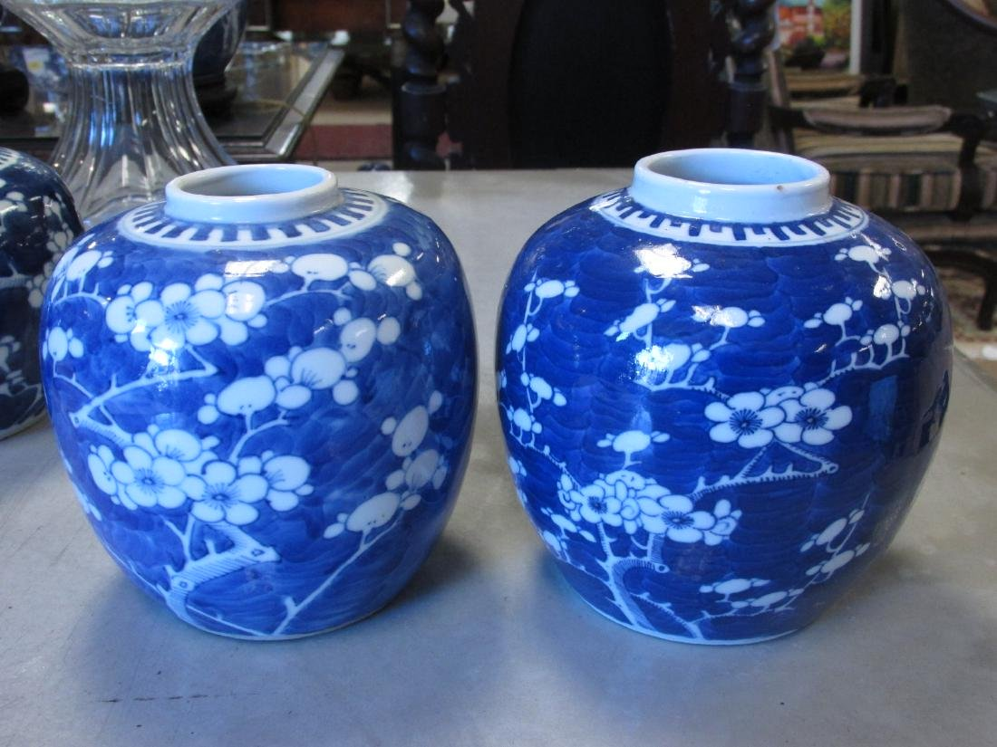 EIGHT CHINESE QING DYNASTY PRUNUS GINGER JARS - 4