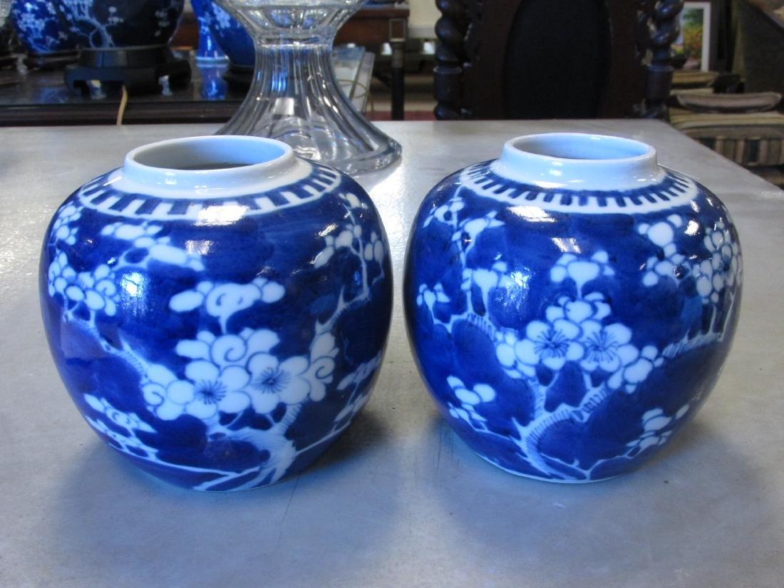 EIGHT CHINESE QING DYNASTY PRUNUS GINGER JARS - 6