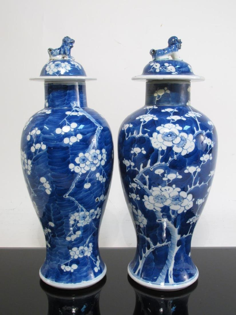 TWO CHINESE QING DYNASTY PRUNUS COVERED URNS