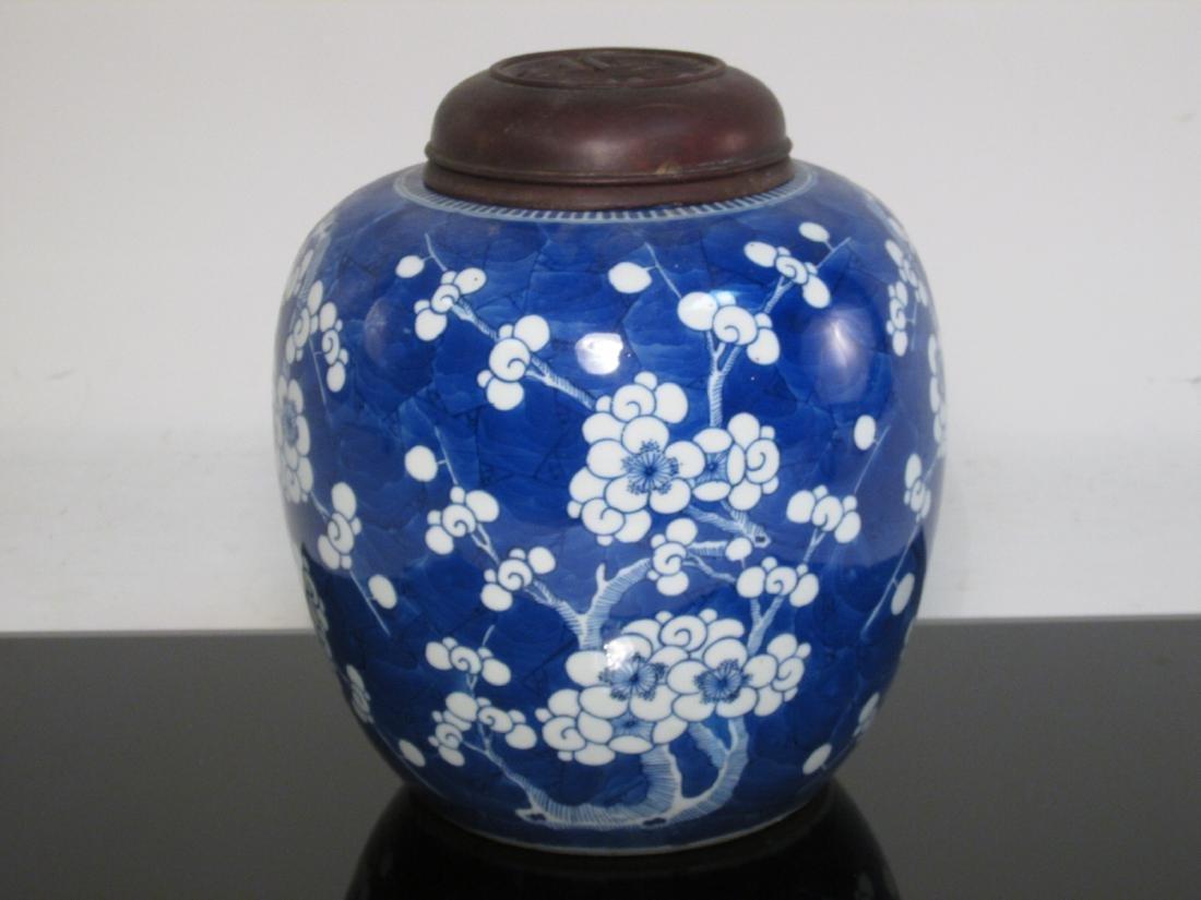 CHINESE QING DYNASTY PRUNUS GINGER JAR
