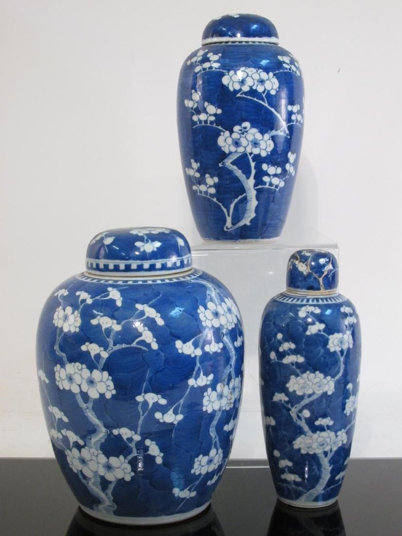 THREE CHINESE QING DYNASTY PRUNUS GINGER JARS