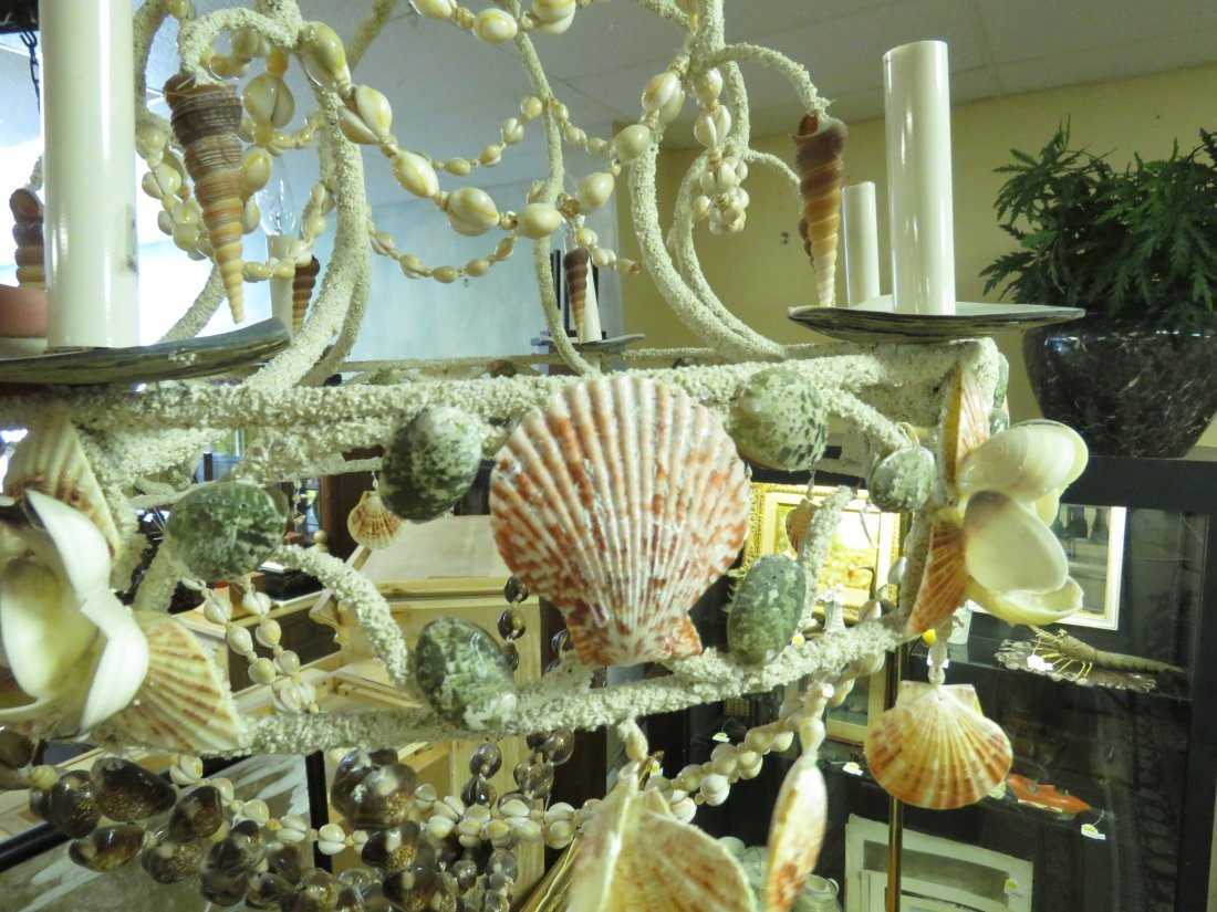 LARGE BEACHY NATURAL SHELL CHANDELIER - 5