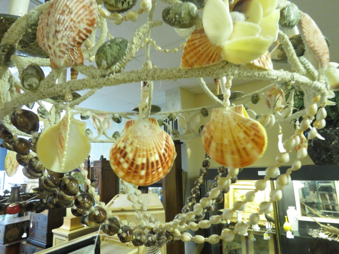 LARGE BEACHY NATURAL SHELL CHANDELIER - 6