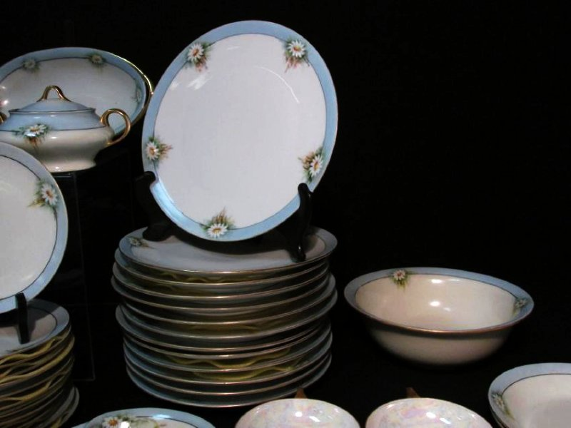 FLORAL DINNERWARE: HUTSCHENREUTHER ETC 125 PCS - 9