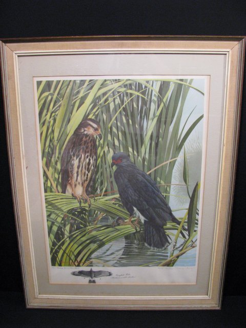 1237: RICHARD EVANS YOUNGER LTD LITHOGRAPH SIGNED PRINT - 7