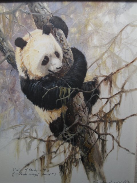 18: WATERCOLOR STUDY OF A PANDA BY SALLY LESTER 1991