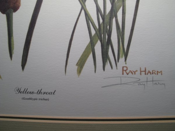 92: TWO RAY HARM PRINTS BIRDS BIRD SIGNED IN PENCIL - 3