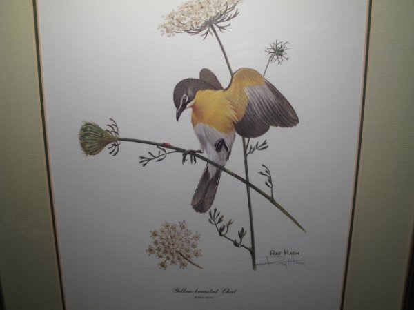 92: TWO RAY HARM PRINTS BIRDS BIRD SIGNED IN PENCIL - 4