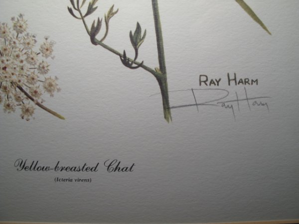 92: TWO RAY HARM PRINTS BIRDS BIRD SIGNED IN PENCIL - 5