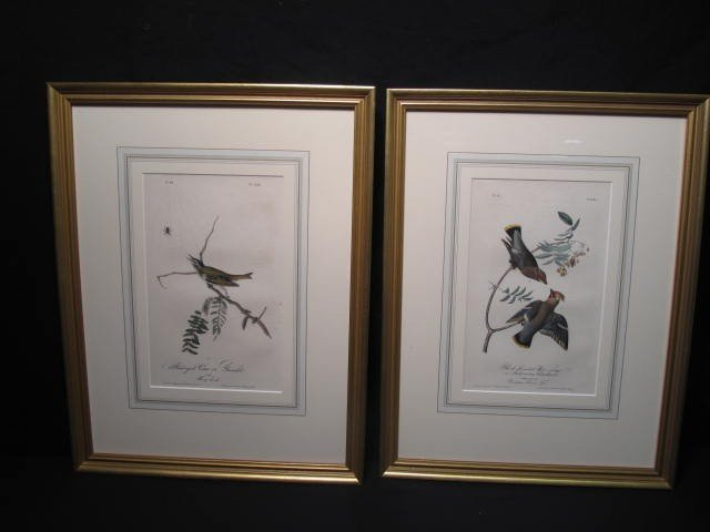 22: TWO BOWEN EDITION AUDUBON LITHOGRAPHS
