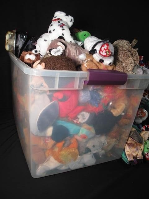 6: ENORMOUS LOT OF BEANIE BABIES 320+ - 3