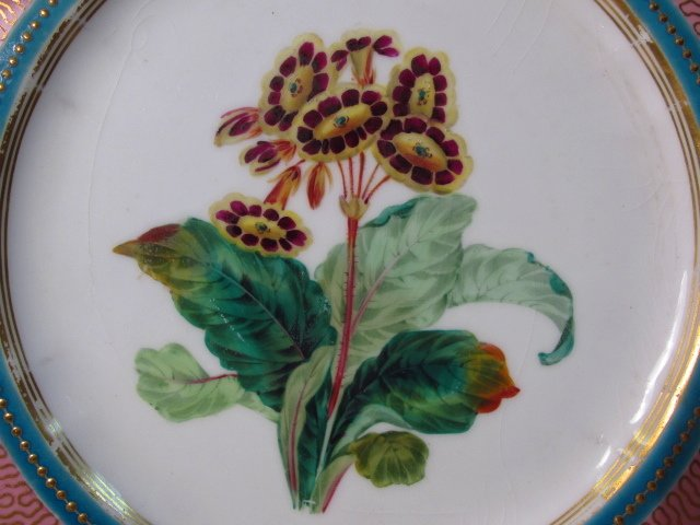 NINE EARLY ROYAL WORCESTER HAND PAINTED PLATES - 7