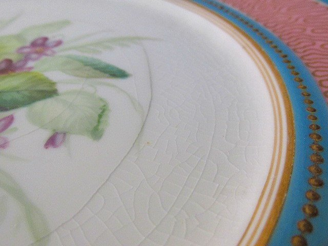 NINE EARLY ROYAL WORCESTER HAND PAINTED PLATES - 9