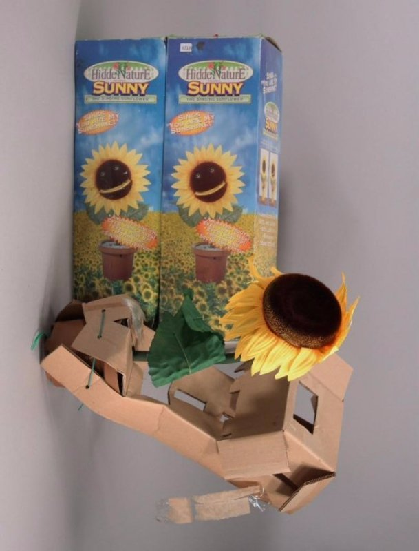 Sunny The Singing Sunflower (3)