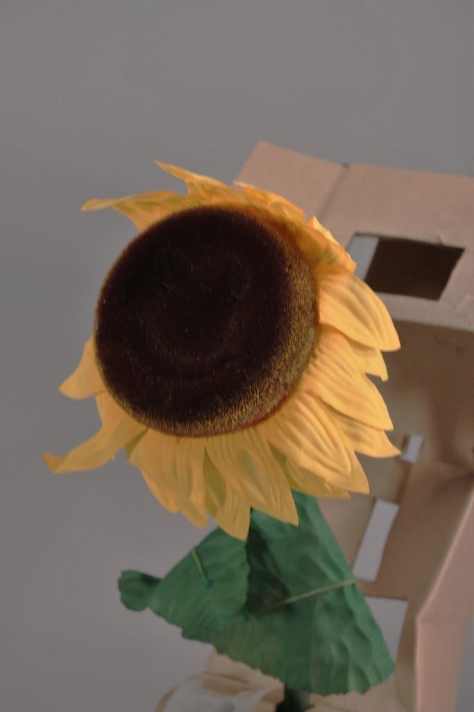 Sunny The Singing Sunflower (3) - 7