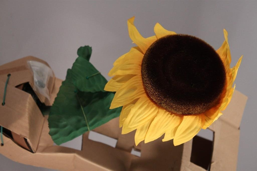 Sunny The Singing Sunflower (3) - 8