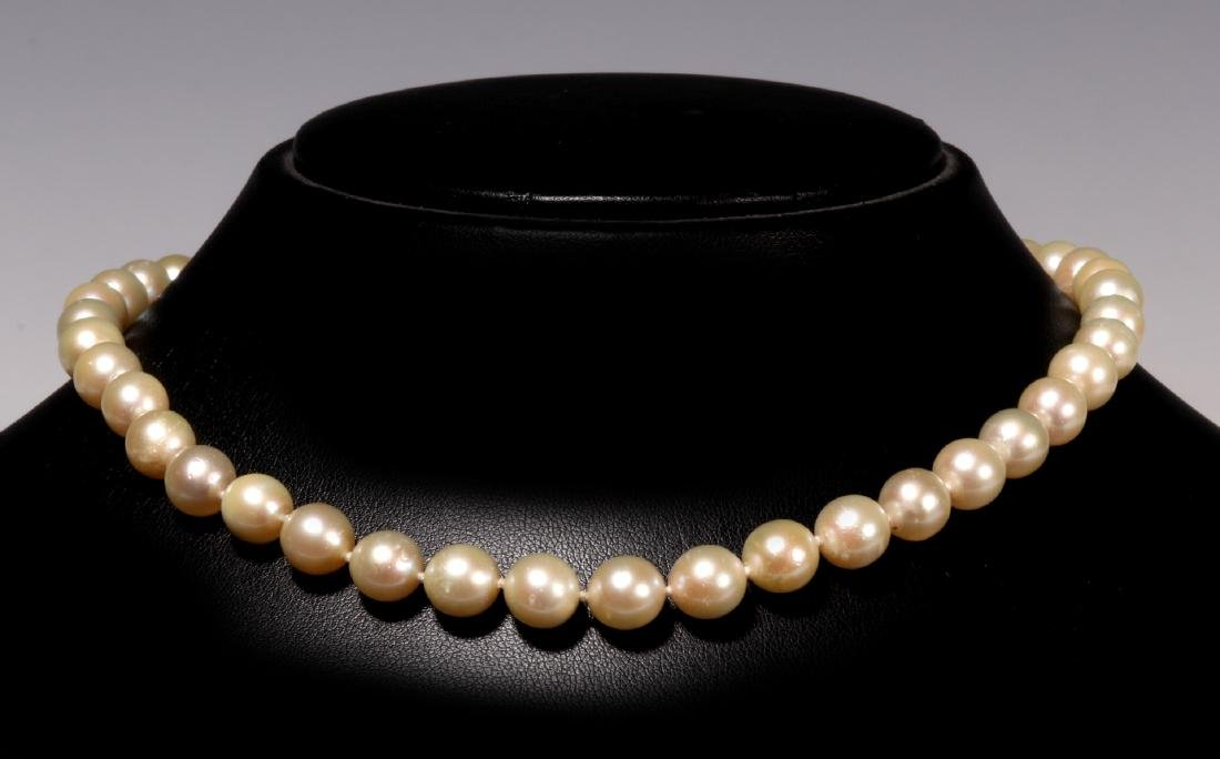 A NICE VINTAGE PEARL CHOKER LENGTH NECKLACE