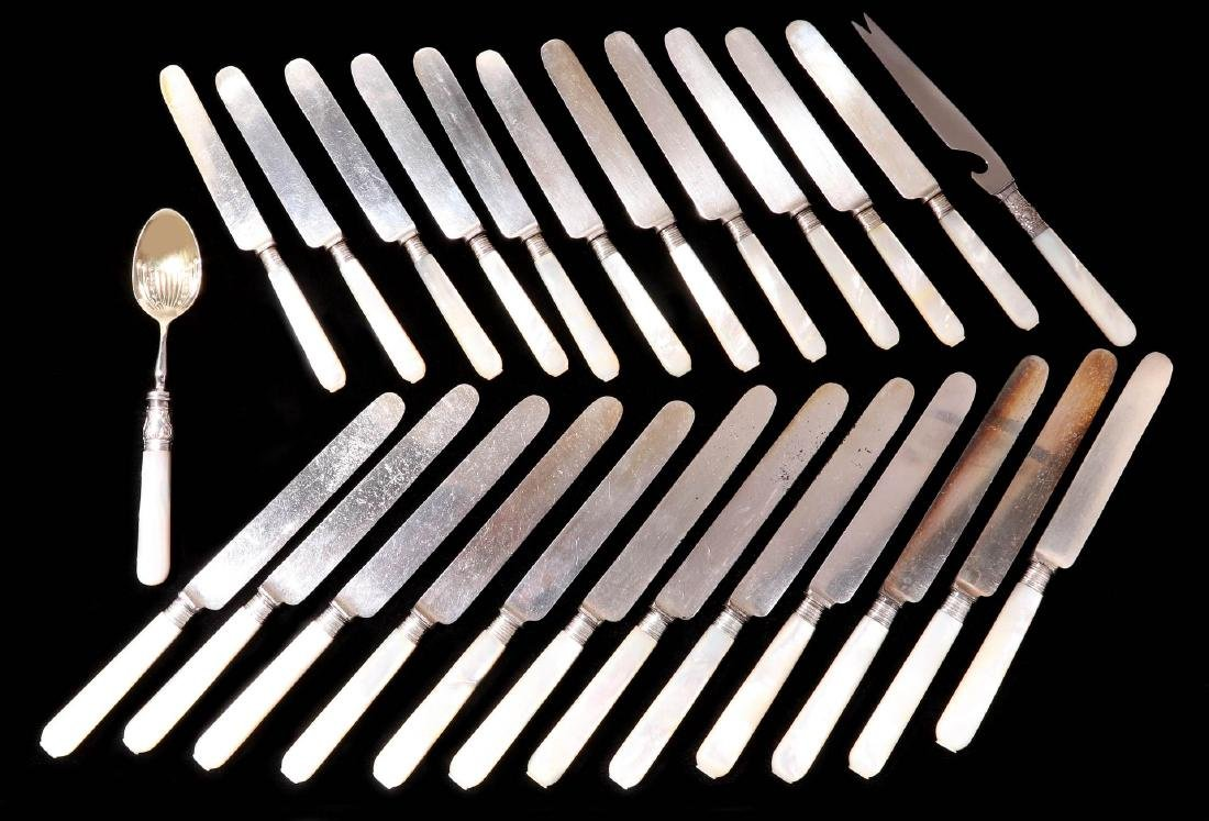 TWENTY FIVE PCS PEARL HANDLED KNIVES AND SPOON
