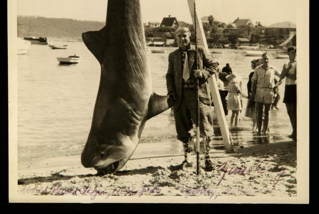 SIGNED ZANE GREY PHOTOGRAPH WITH TIGER SHARK - 3