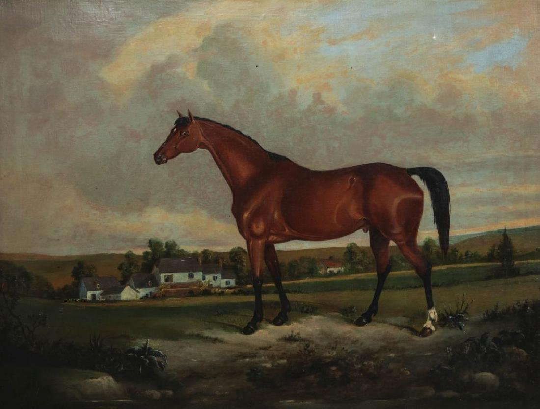 AN EARLY 19TH C BRITISH SCHOOL EQUINE PORTRAIT