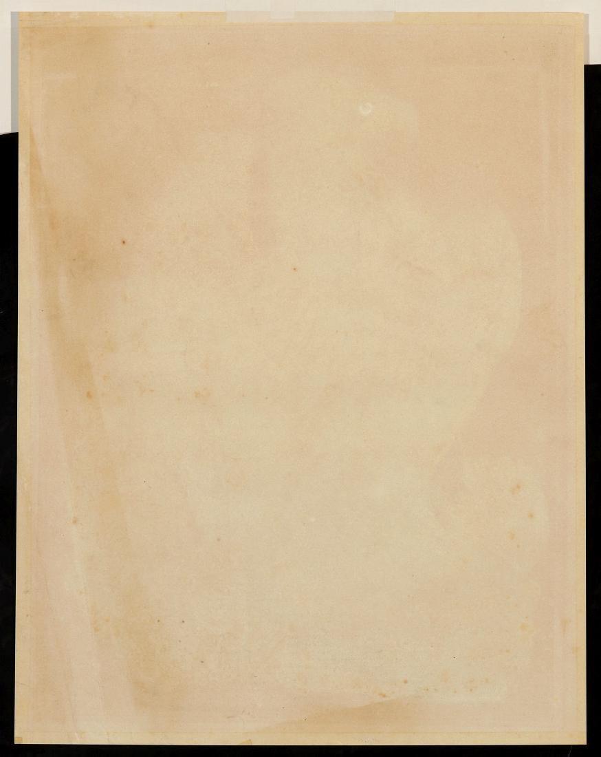 PRIDEAUX JOHN SELBY, GOLDEN EAGLE FEMALE, C. 1820 - 9
