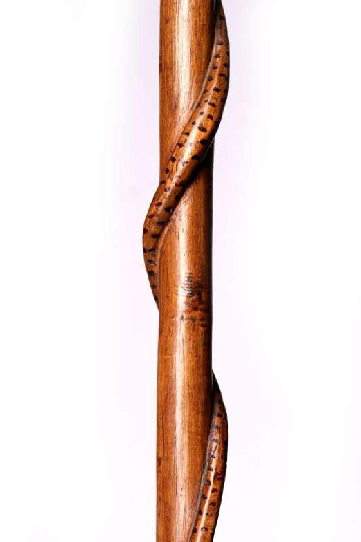 A 19TH C. CARVED FOLK ART CANE WITH BIRD AND SNAKE - 8