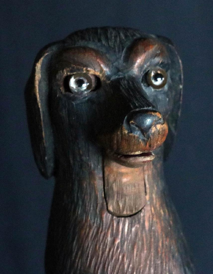 A BLACK FOREST GLASS EYED DOG WOOD NUT CRACKER