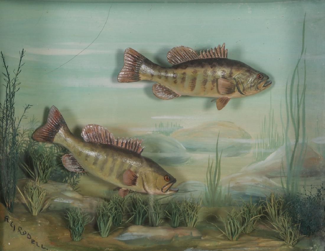 FOLK ART DIORAMA BY R.G. RODELL - LARGEMOUTH BASS