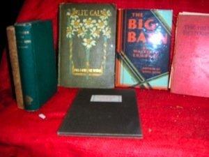 356: Lot of Ltd, 1st Ed, DJ'd, Signed American Literatu