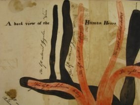 346: AN 1813 WATERCOLOR OF THE HUMAN HEART BY ZACHARIAH