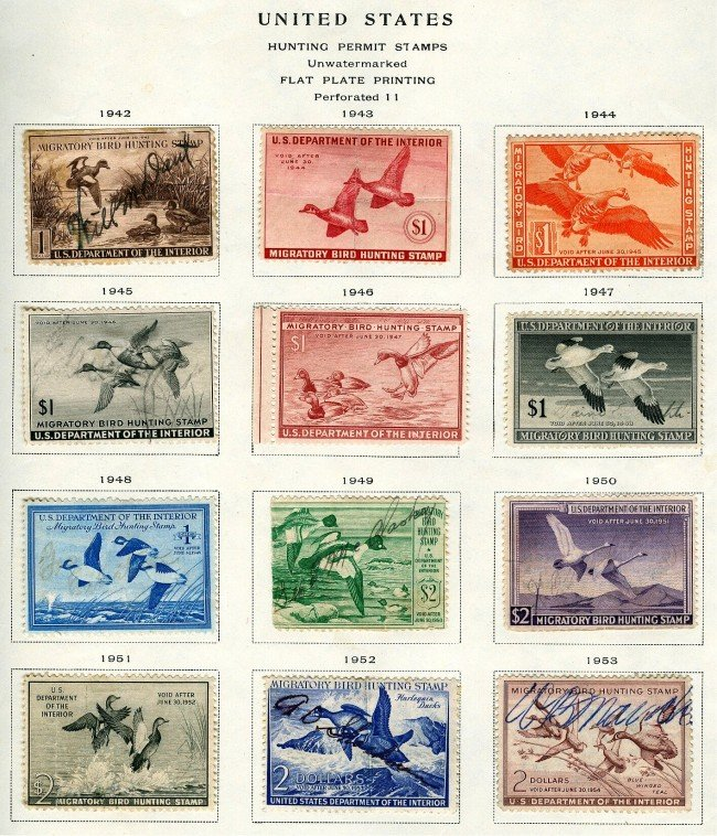 16 DUCK STAMPS & MIGRATORY FROM 1934-1962
