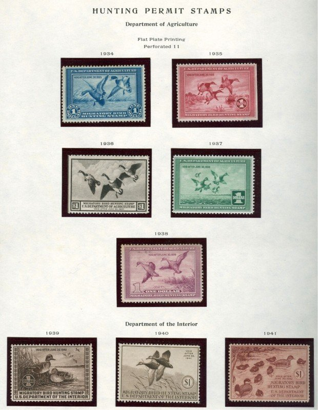 A FINE COMPLETE DUCK STAMP SET 1934-1983