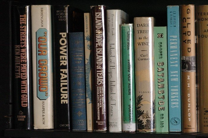 LOT OF 27 BOOKS ON NEW YORK