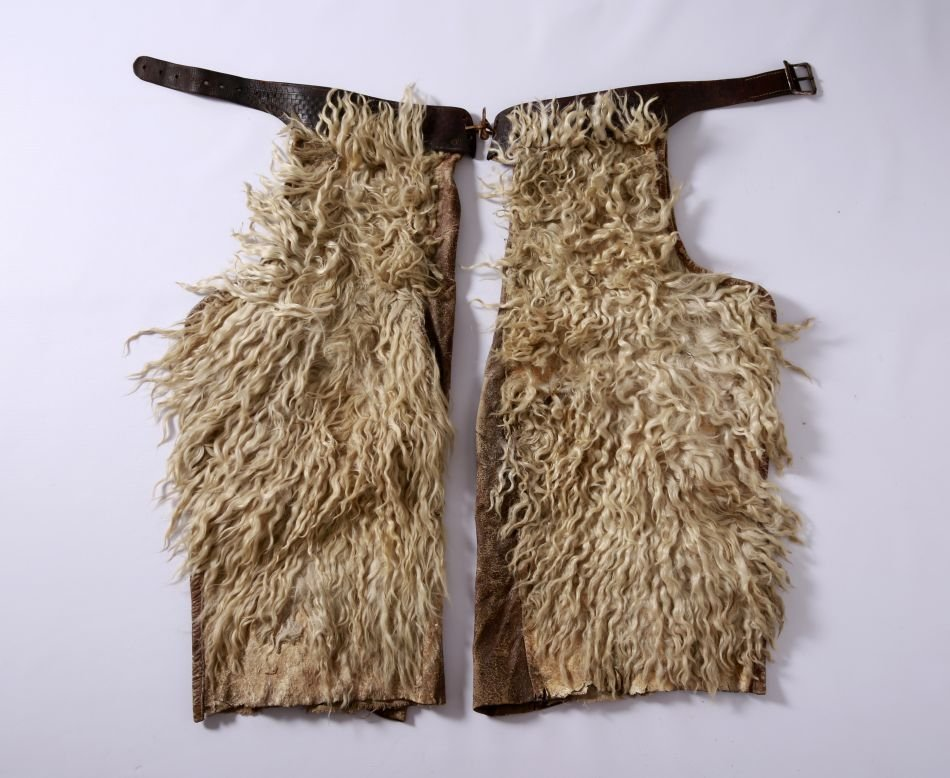 GOOD PAIR EARLY 20TH C. WOOLLY CHAPS, COLLINS OMAHA