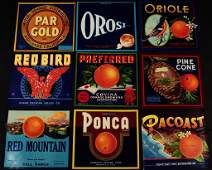 NINETY-FIVE NEW OLD STOCK VINTAGE CRATE LABELS C. 1940