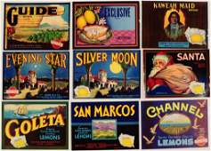 NINETYFOUR NEW OLD STOCK VINTAGE CRATE LABELS C 1940