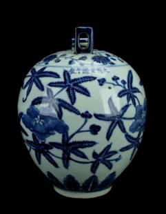 Chinese Ming Porcelain BlueWhite Vase