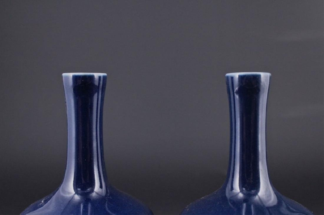 Pair of Chinese Qing Porcelain Blue Glaze Vase - 2
