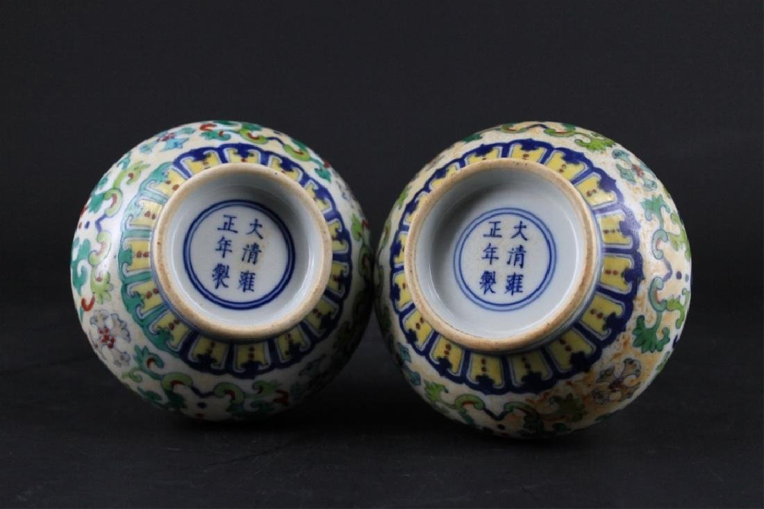 Pair of Chinese Qing Porcelain DouCai Vase - 4