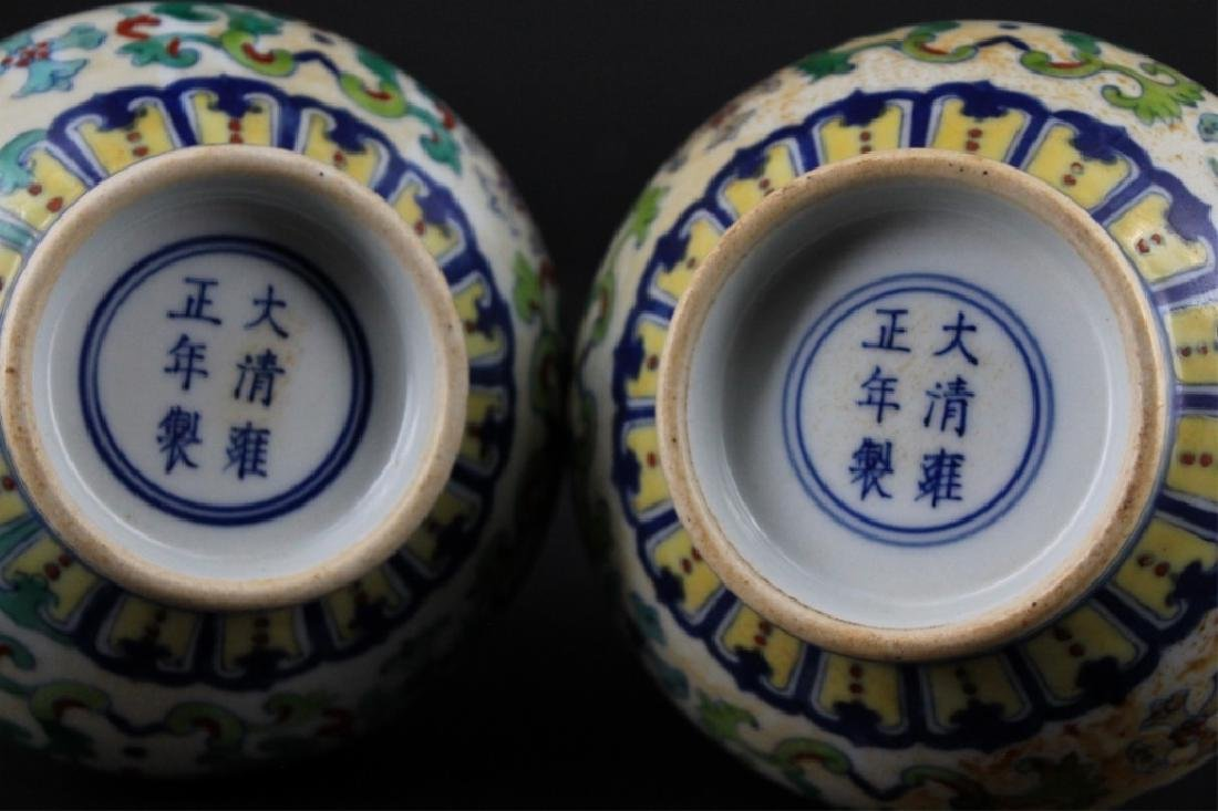 Pair of Chinese Qing Porcelain DouCai Vase - 5