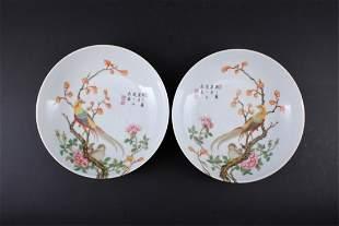 Pair of Chinese Qing Porcelain Enamel Plate