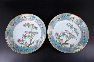 Pair of Qing Porcelain Famille Rose Plate