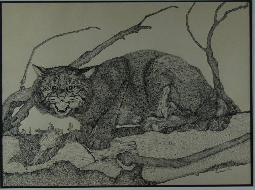 "Micheal Rice, ""Bobcat"", Original Pen & Ink. Signed."