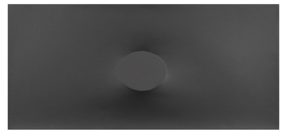 Turi Simeti (1929), Un ovale grigio, 1985