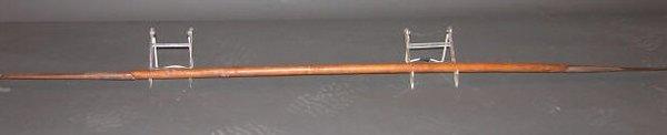 4018: Madagascar Spear
