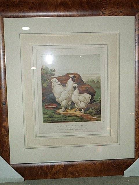 11: EIGHT STONE LITHOGRAPHS OF CHICKENS.  By