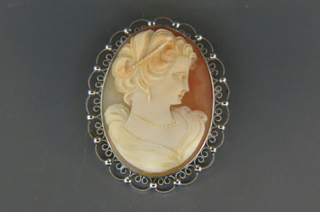 Carved Cameo Brooch or Pendant,